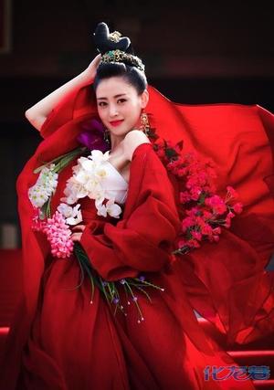 张柏芝 《太子妃升职记》/